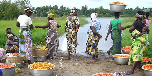 TDS Voyage - Tourisme équitable et solidaire au Bénin