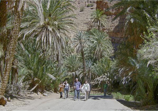 TDS Voyage - Tourisme équitable et solidaire - Maroc - Oasis