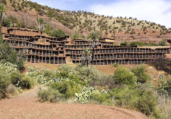 TDS Voyage - Tourisme équitable et solidaire - Maroc - Inzerki - Rucher