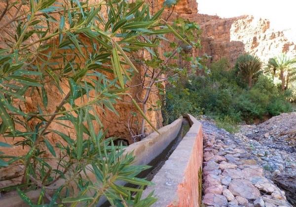 TDS Voyage - Tourisme équitable et solidaire - Maroc - Gorges d'Aït Mansour - Irrigation