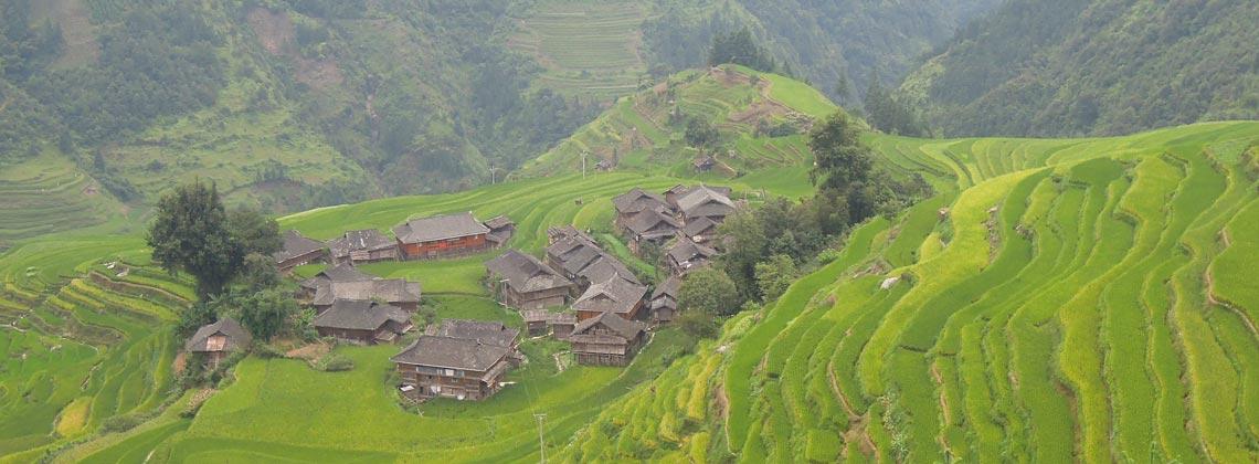 TDS VOYAGE - Tourisme équitable et solidaire Riziere en Chine