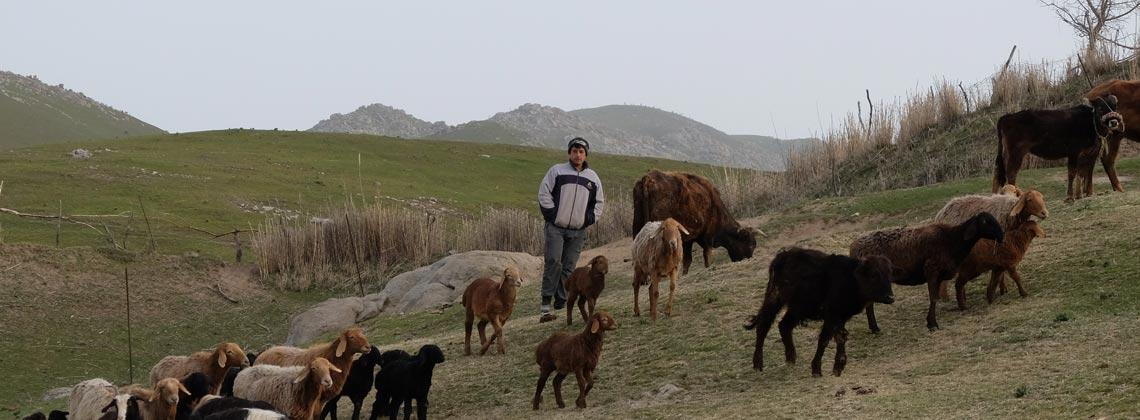 TDS VOYAGE - Tourisme équitable et solidaire Ouzbekistan
