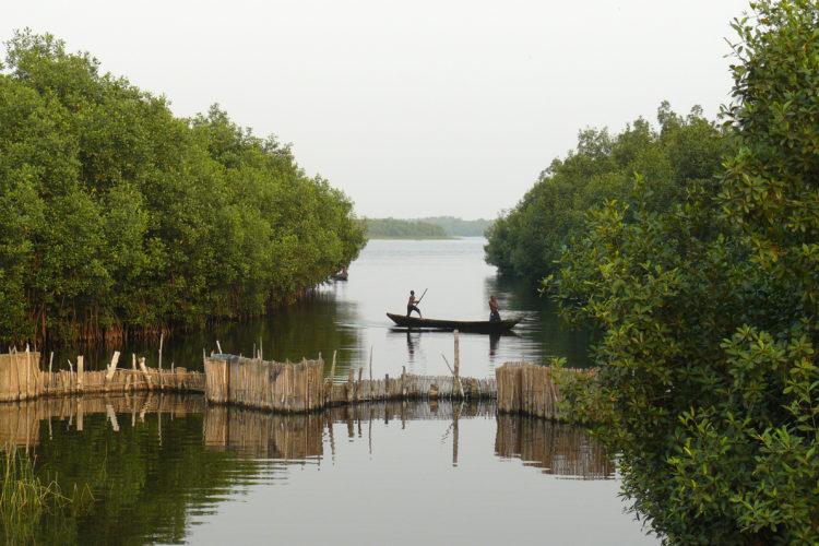 TDS Voyage - Promenade sur les lagunes en pirogue