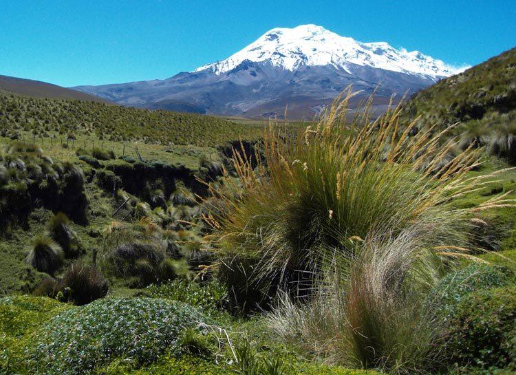 TDS Voyage solidaire en Equateur