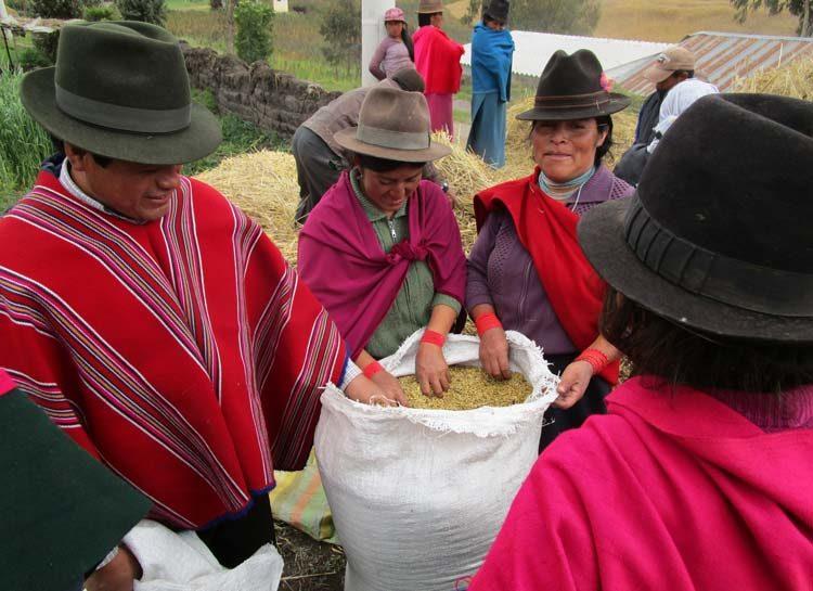 TDS Voyage Equateur San Martin Alto