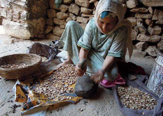 Tds Voyage - Tourisme au Maroc