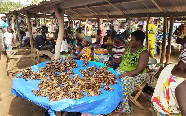 Vacances solidaires avec TDS Voyage - Marché au Togo