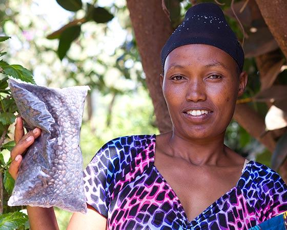 Rencontre dans une plantation de café - Tanzanie
