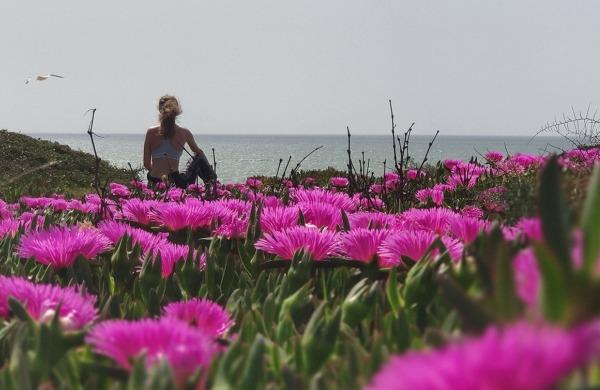 TDS Voyage - Tourisme équitable et solidaire - Algarve - Mer - Fleurs